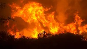Stunning video: At least five brush fires swept through Napa, Sonoma, Lake and Mendocino counties, charring nearly 30,000 acres. The inferno has destroyed homes and businesses, and has forced evacuations of thousands of people in California's wine country.