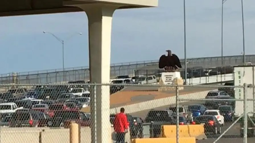 US Customs & Border Protection placed officers on bridges to expedite process.