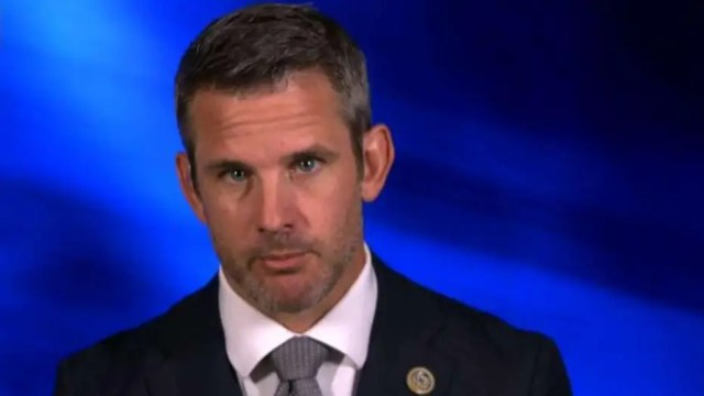 Rep. Kinzinger says there's a movement brewing in the U.S. to abolish the Second Amendment