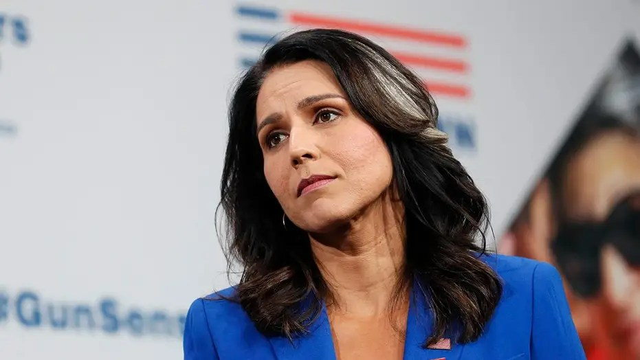 tulsi gabbard appears likely