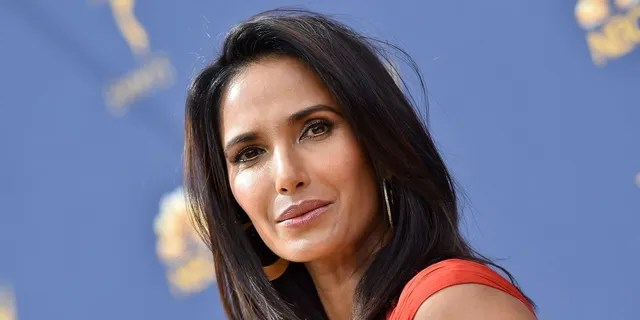 'He did not win,' Padma Lakshmi declared early Wednesday after President Trump made a speech from the White House declaring he won multiple key states in the 2020 election.