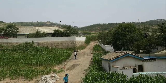"""Las agencias de alimentos de las Naciones Unidas advirtieron que aproximadamente 10 millones de personas en Corea del Norte, alrededor del 40 por ciento de la población, enfrentan una """"grave escasez de alimentos"""" después de que el país tuvo una de las peores cosechas en una década."""