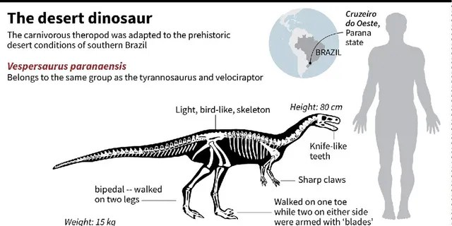Factfile on the carnivorous theropod dinosaur, adapted to the prehistoric desert conditions of southern Brazil 90 million years ago. (Credit: Phys.org)