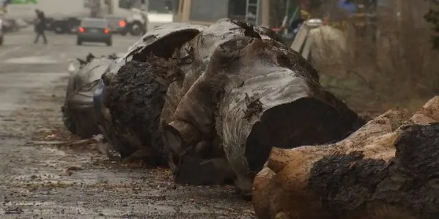 Large tree logs were placed outside Oakland, California businesses to help deter homeless residents from parking their cars outside.