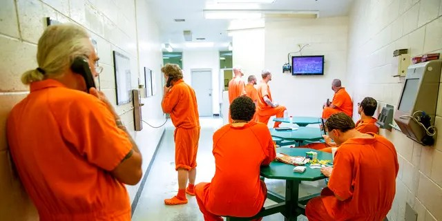 FILE: Inmates pass the time within their cell block at the Twin Falls County Jail in Twin Falls, Idaho.