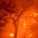 Hurricane-force winds fuel wildfire, topple tree in Italy, killing 2 kids