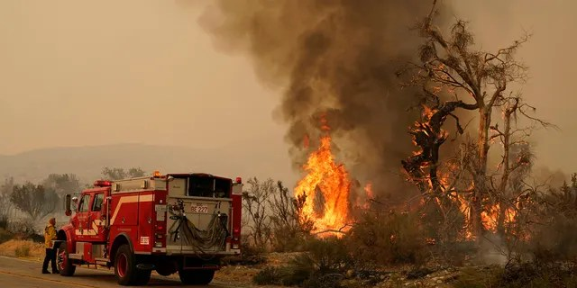 A San Bernardino County Fire Department member keeps an eye on a flareup from the Bobcat Fire on Saturday, Sept. 19, 2020, in Valyermo, Calif.