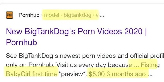 Search screenshot shows BigTankDog's Pornhub profile with monetized content (Credit: Exodus Cry)