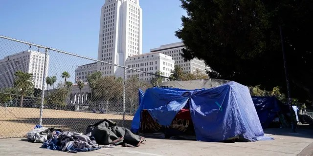 Tent occupied by a homeless person stands just outside Grand Park, with Los Angeles City Hall in the background. As homicides approach 300 for the year, many victims are connected to gangs and experiencing homelessness, according to police figures.<br> (AP Photo/Chris Pizzello)