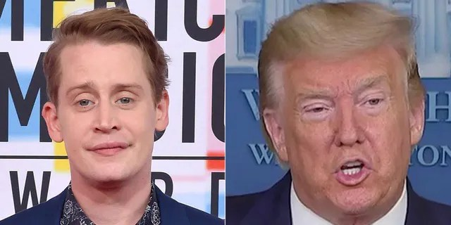 Macaulay Culkin agreed with a fan who posed the idea that Donald Trump should be digitally removed from 'Home Alone 2: Lost in New York.'