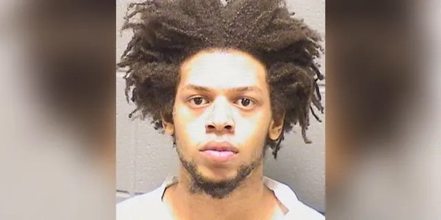 Isaiah Jones, 20, is charged with first-degree murder in the killing of Jearlean Willingham early Thursday in the Cook County village of Bellwood. (Cook County Sheriff's Office)