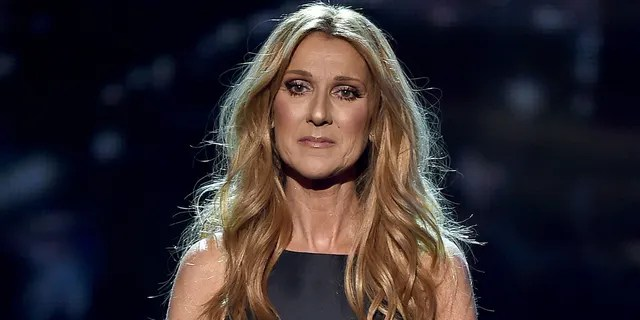 Celine Dion owns a home in Florida that has three pools. (Photo by Kevin Winter/Getty Images)