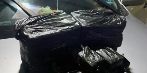 Agents found $  5 million worth of drugs inside two Bronx apartments and a vehicle during a June 11 bust, officials said Friday.