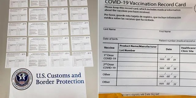 A collection of fake vaccination cards shipped from China.