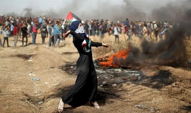 Image result for против оккупации газы