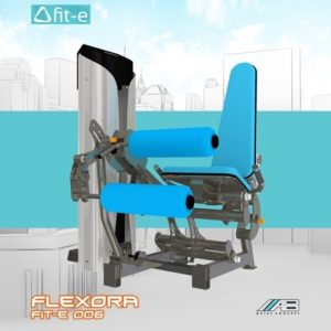 Flexora Fit-e 006