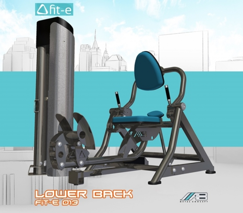 Lower back fit-e 013