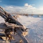 Alabama Gulf Coast beach