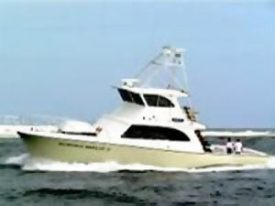 Summer Breeze 2 Charter Boat