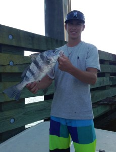 gulf shores fishing in inland waters for sheepshead