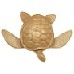 turtle design biodegradable marine urn for gulf of mexico burial at sea