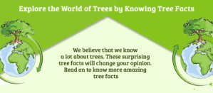 Tree Facts