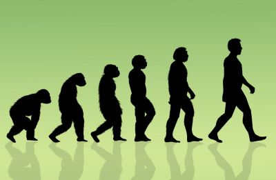 علماء أمريكان يدحضون النظرية الشائعة عن تطور البشرية