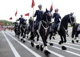 القوات المسلحة الملكية تشارك في الدورة ال12 لمعرض الفرس بالجديدة