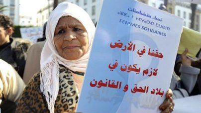 الجامعة الوطنية للقطاع الفلاحي تطالب بإخضاع الأراضي السلالية لإصلاح زراعي ديمقراطي