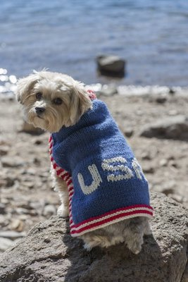 independence day knit pattern pet wear