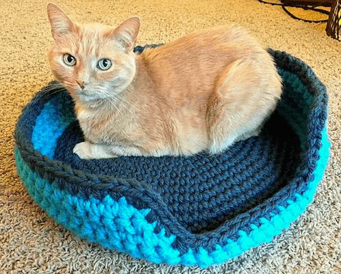 Sturdy Cat Bed