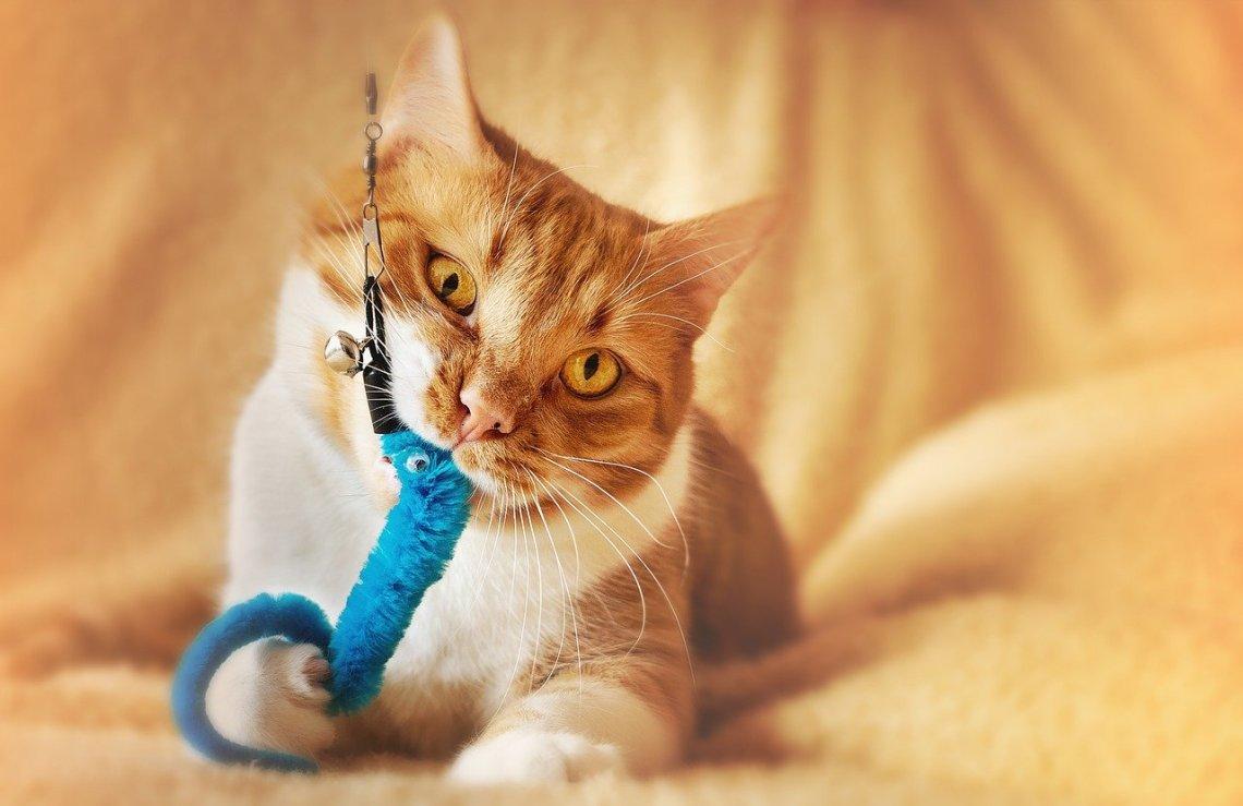 Crochet Cat Toys aabharcreations