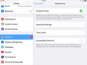 Image of iPad setting screen for enabling Guided Access