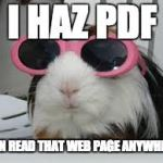 "Image of a guinea pig in sun glasses, saying ""I haz PDF."""
