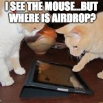 "Image of cats with ""I see the mouse, but where is AirDrop?"" meme"