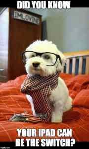 Image of smart dog with glasses