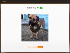 Image of dog book in Pictello app