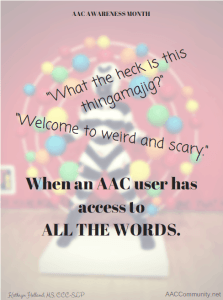 Image of a very weird statue and some quotes from an AAC user.
