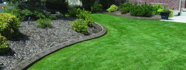 custom concrete curbing and landscape