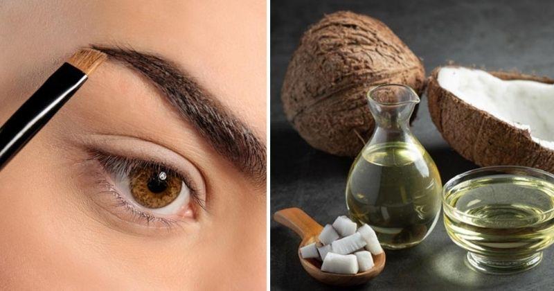 आईब्रोज के लिए बेस्ट है नारियल का तेल, जानें इस्तेमाल का सही तरीका