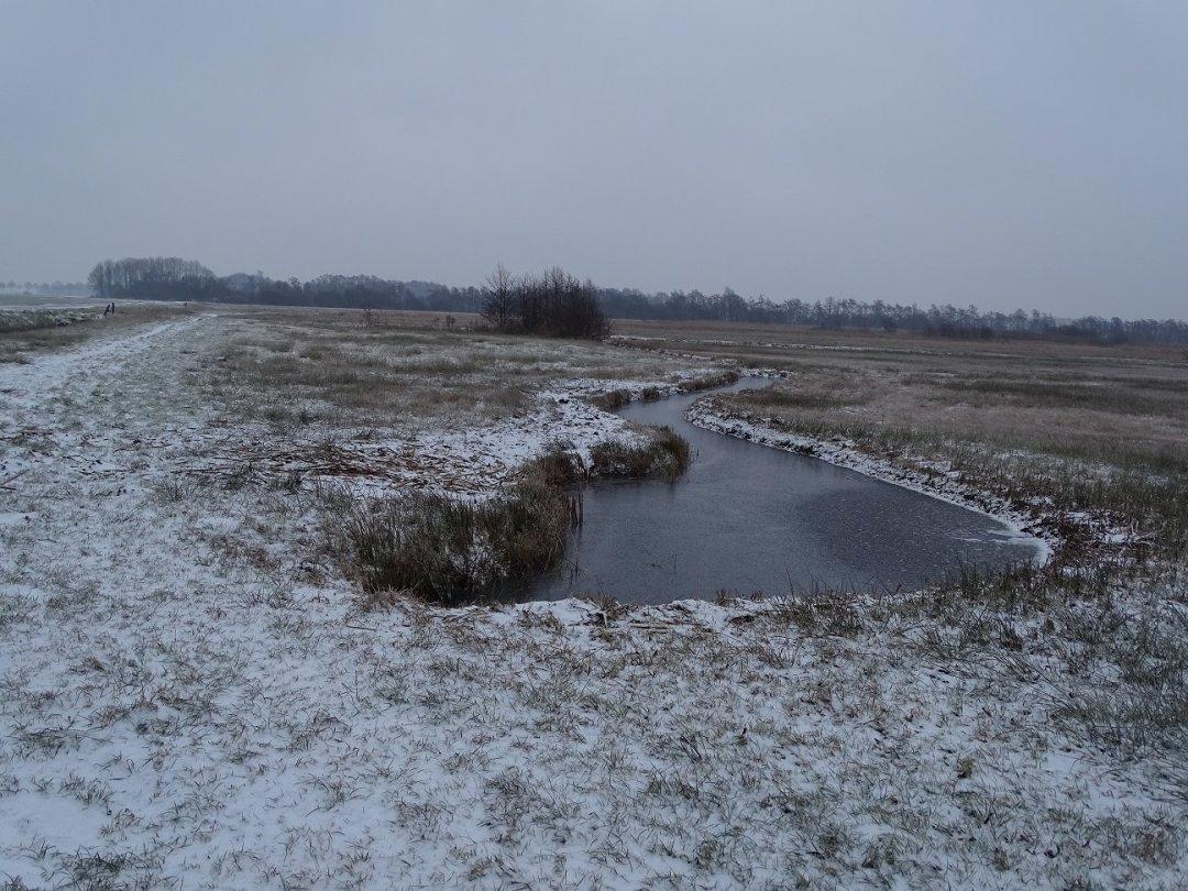 Bevroren water in de Wieden