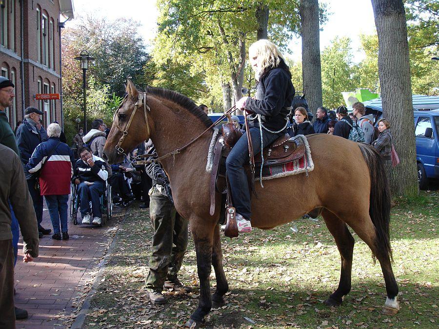zuidlaardermarkt Horse fair art 67