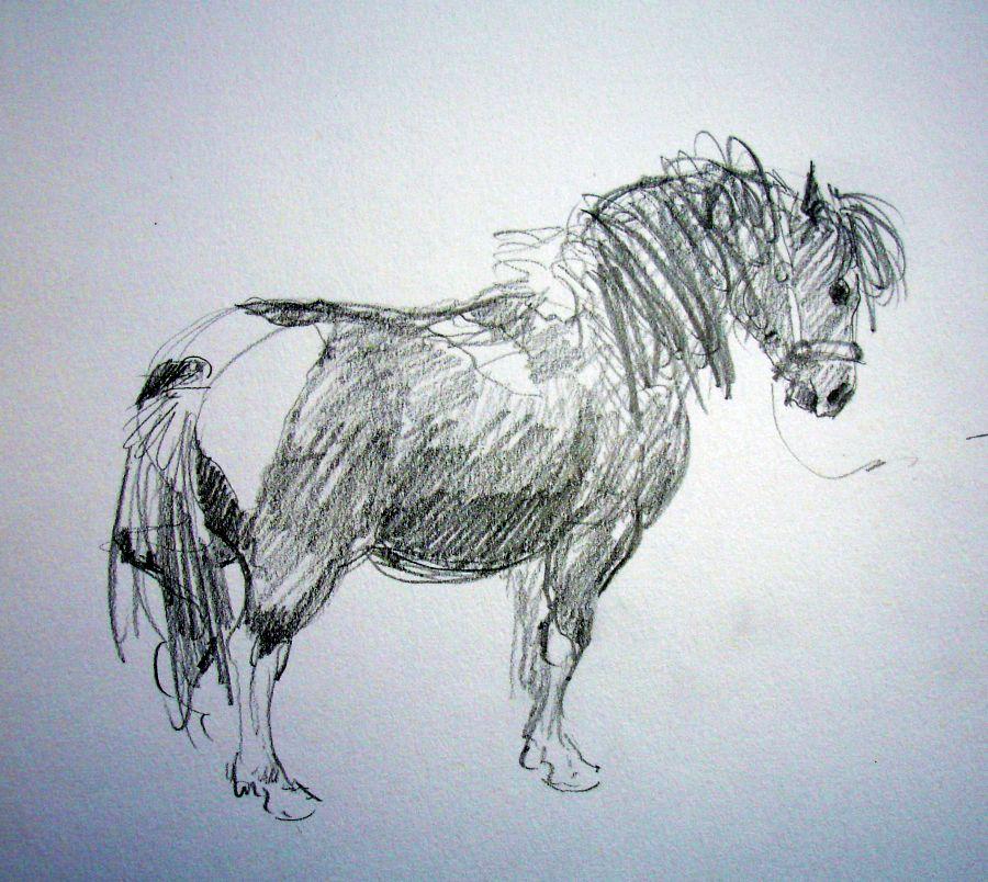 zuidlaardermarkt Horse fair art sketch10