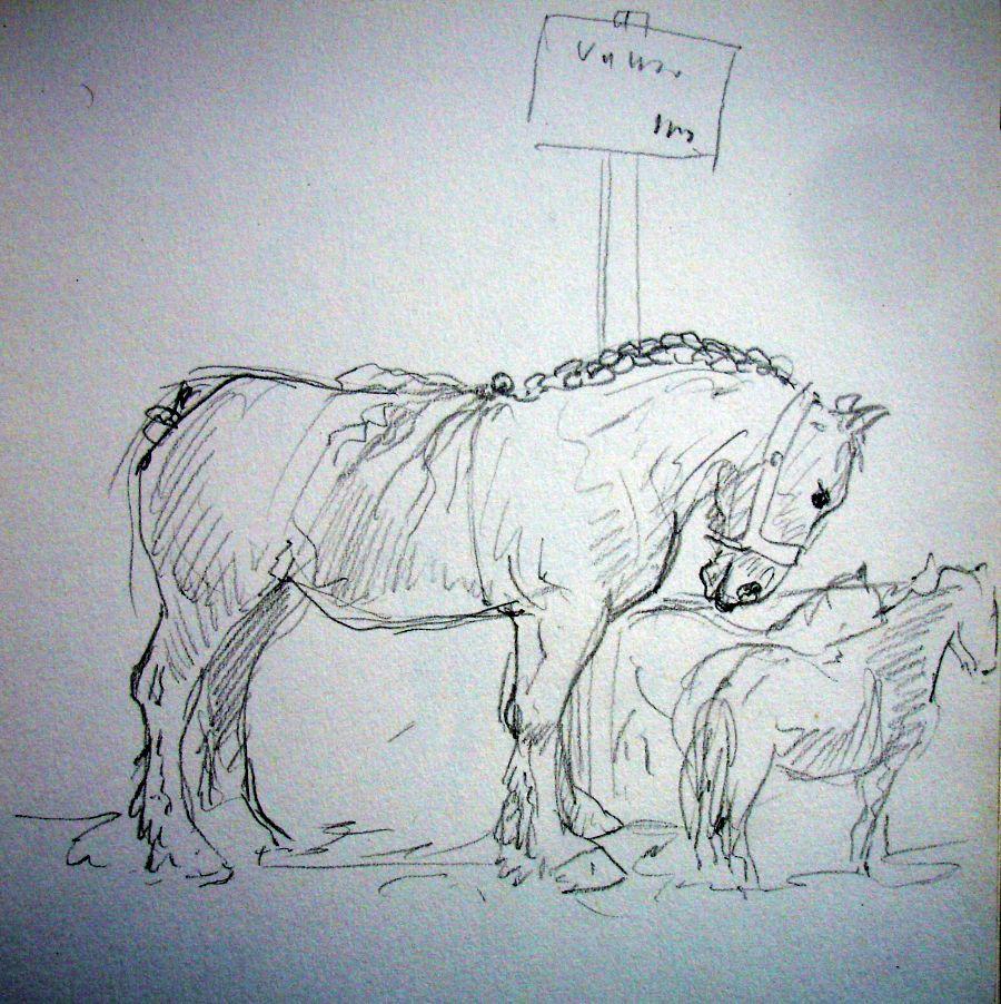 zuidlaardermarkt Horse fair art sketch12