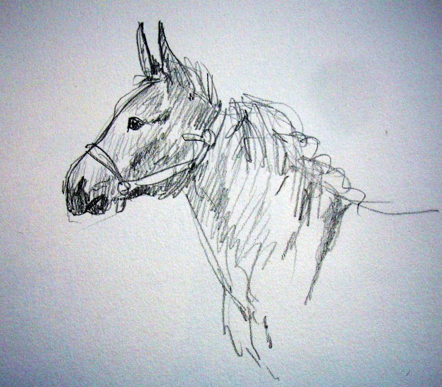 zuidlaardermarkt Horse fair art sketch3