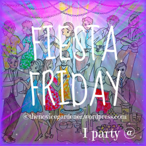 Fiesta Friday