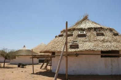 Révolution: toits de chaume en typha!