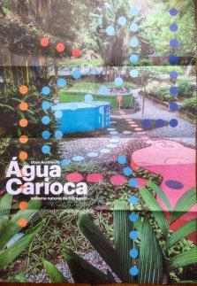 agua carioca-Burle Marx 4