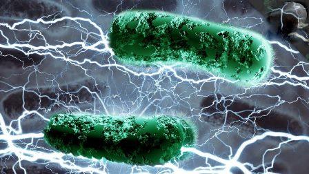 سائنسدانوں کا جراثیموں کو کرنٹ لگا کر مارنے کا منصوبہ