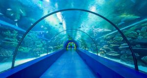 متحف حوض السمك أنطاليا أكواريوم